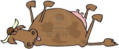pin dead dog cartoon - photo #40
