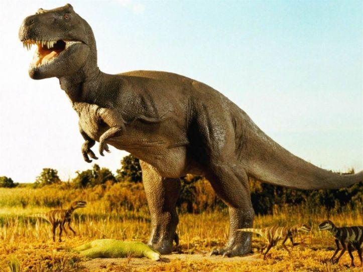 Dinosaurio Gigante-431957_1024